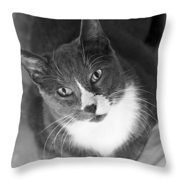 Devotion - Cat Eyes Throw Pillow