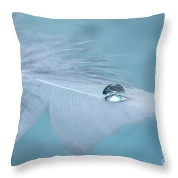 Thoughts Of Yesterday Throw Pillow