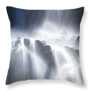 Thousand Springs Throw Pillow