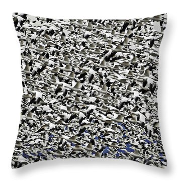 Thousands Of Snow Geese In Flight Throw Pillow