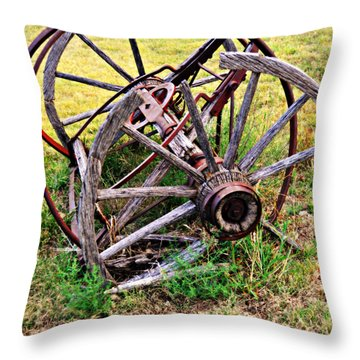 Thrasher Past Throw Pillow by Marty Koch