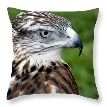 The Threat Of A Predator Hawk Throw Pillow