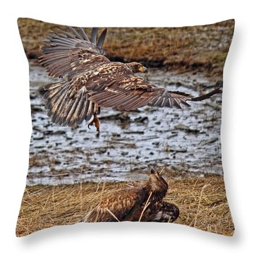 Threat From Above Throw Pillow