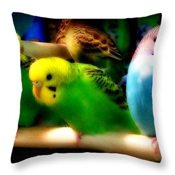 Throw Pillow featuring the photograph Three Amigos by Aurelio Zucco