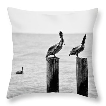 Three Amigos Throw Pillow by Scott Pellegrin