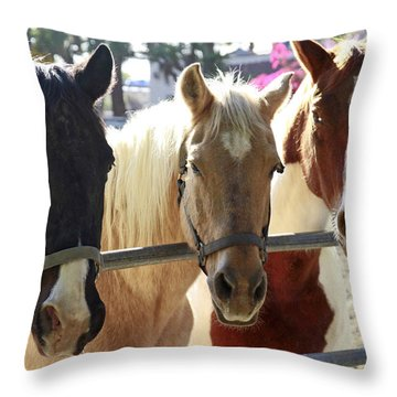 Three Amigos Throw Pillow by Shoal Hollingsworth