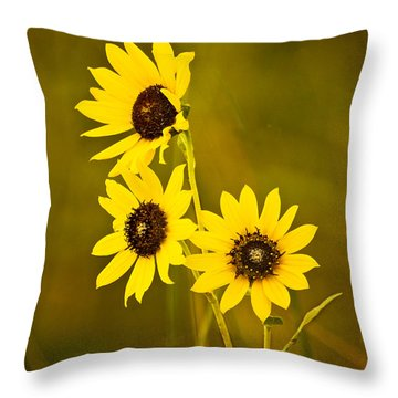 Throw Pillow featuring the photograph A Trio Of Black Eyed Susans by Gary Slawsky