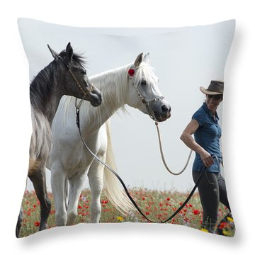 Three At The Poppies' Field... 1 Throw Pillow by Dubi Roman