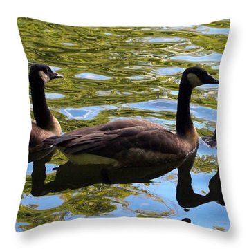 Throw Pillow featuring the photograph Three Canadian Geese by Deborah Fay