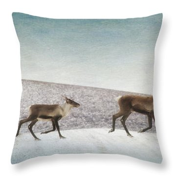 Three Caribous Throw Pillow by Priska Wettstein