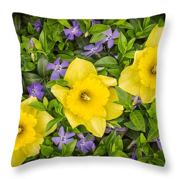 Three Daffodils In Blooming Periwinkle Throw Pillow by Adam Romanowicz
