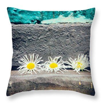 Throw Pillow featuring the photograph Three Daisies Stuck In A Door by Silvia Ganora