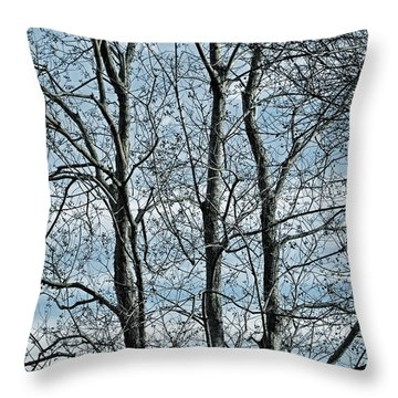 Three Dead Trees Throw Pillow by Cathy Jourdan