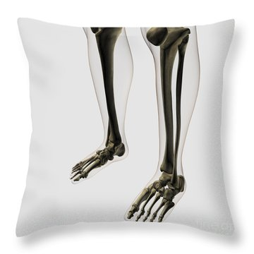 Three Dimensional View Of Human Leg Throw Pillow by Stocktrek Images