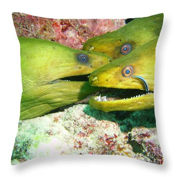 Three Eels Throw Pillow by Carey Chen