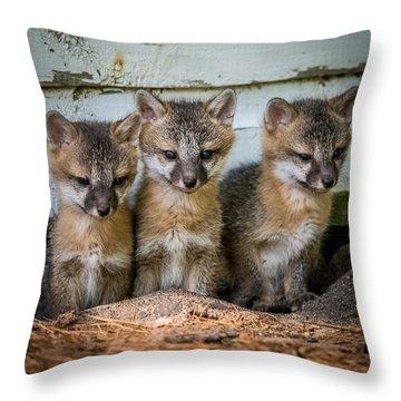 Three Fox Kits Throw Pillow by Paul Freidlund