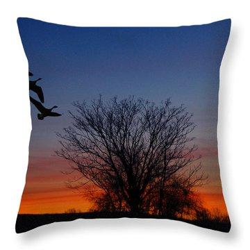 Three Geese At Sunset Throw Pillow by Raymond Salani III