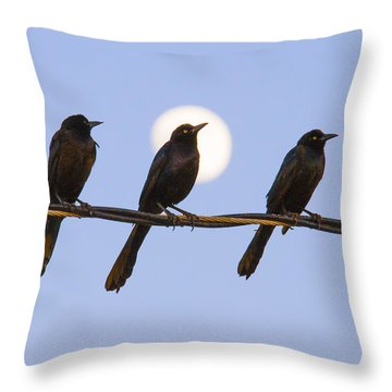 Three Grackles With Full Moon Throw Pillow