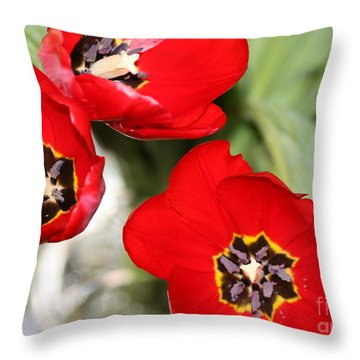 Throw Pillow featuring the photograph Three In Red  by Cathy Dee Janes