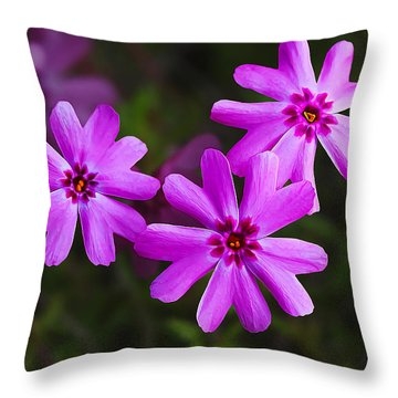 Three In The Pink Throw Pillow