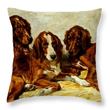 Three Irish Red Setters Throw Pillow by John Emms