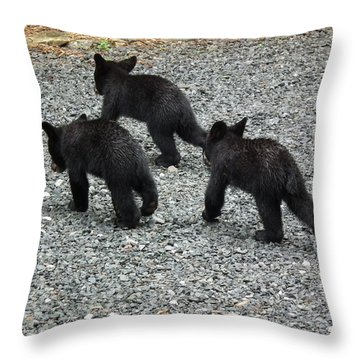 Throw Pillow featuring the photograph Three Little Bears In Step by Jan Dappen