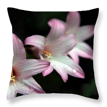 Throw Pillow featuring the photograph Three Of A Kind by Greg Allore