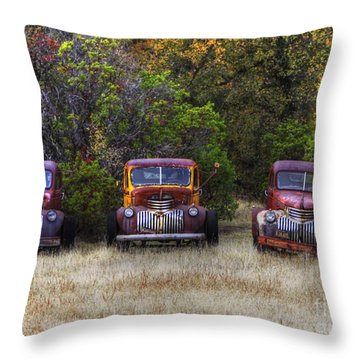 Three Old Friends Throw Pillow by Kandy Hurley