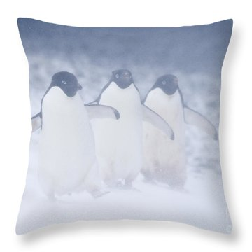 Three Penguins In A Blizzard Throw Pillow by Carol Walker