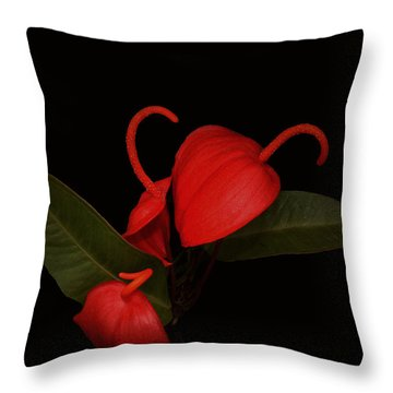 Three Red Orchids Throw Pillow