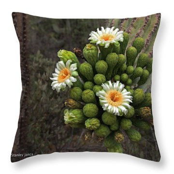 Three Saguaro Blossoms And Many Buds Throw Pillow