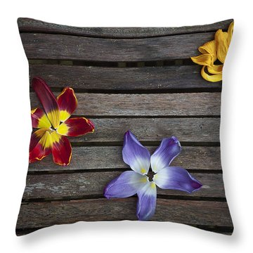 Three Throw Pillow by Svetlana Sewell