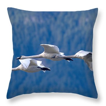 Three Swans Flying Throw Pillow