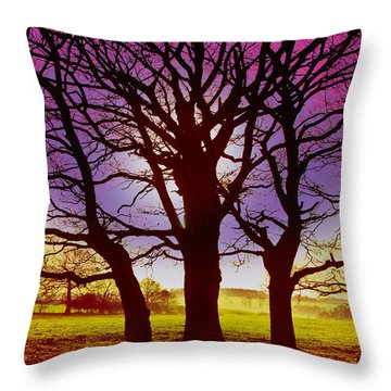 Three Trees Throw Pillow by David Davies