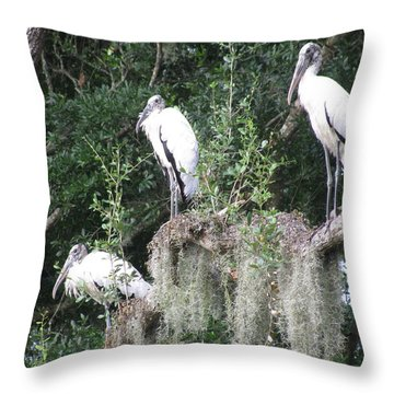 Three Wood Storks Throw Pillow by Ellen Meakin