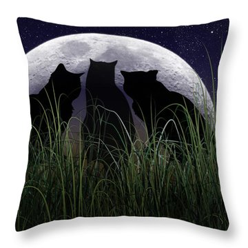 Threefold Throw Pillow by Brian Wallace