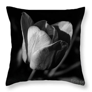 Threshold - Monochrome Throw Pillow