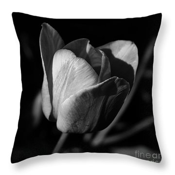Threshold - Monochrome Throw Pillow
