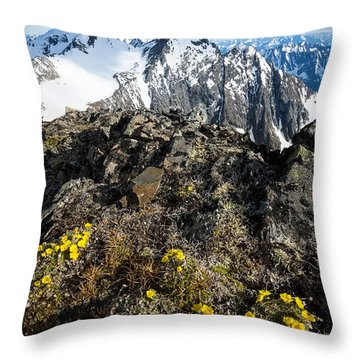 Throw Pillow featuring the photograph Thriving In Adversity by Tim Newton