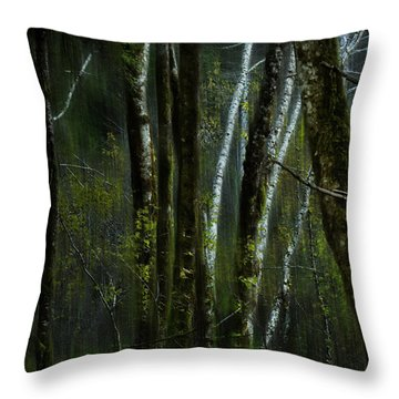Throw Pillow featuring the photograph Through A Glass . . . Darkly by Belinda Greb