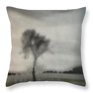 Through A Train Window Number 2 Throw Pillow by Carol Leigh