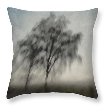 Through A Train Window Number 3 Throw Pillow by Carol Leigh