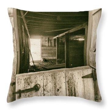 Through The Barn Door Throw Pillow