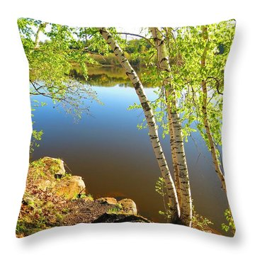 Through The Birch Throw Pillow by MTBobbins Photography