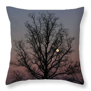 Through The Boughs Landscape Throw Pillow by Dan Stone