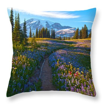Through The Golden Meadows Throw Pillow by Mike Reid
