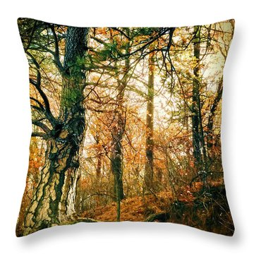 Through The Island Forest Throw Pillow