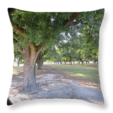 Through The Orchard Throw Pillow