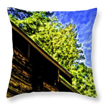 Through The Roof-2 Throw Pillow