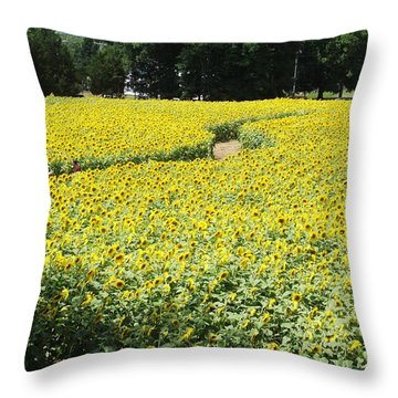 Through The Sunflowers Throw Pillow by Michelle Welles